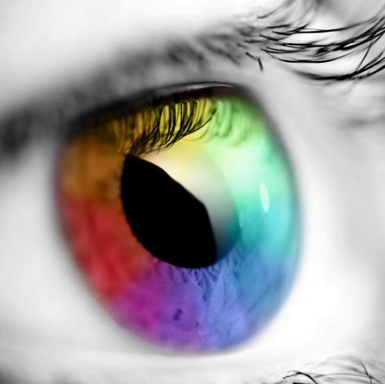 Colors Impact500x500